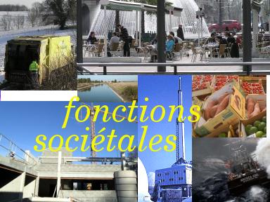 entrée Fonctions Sociétales