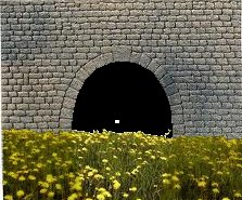 Entrée de tunnel et fleurs
